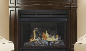 10 Lovely Mendota Fireplace Price List