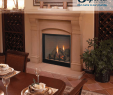 Napoleon Direct Vent Gas Fireplace Lovely Custom Series Direct Vent Fireplaces Our Name is Our Promise