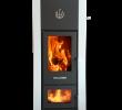 Nu Flame Fireplace Inspirational Kaminofen Wasserführend Verkauf Wallnöfer