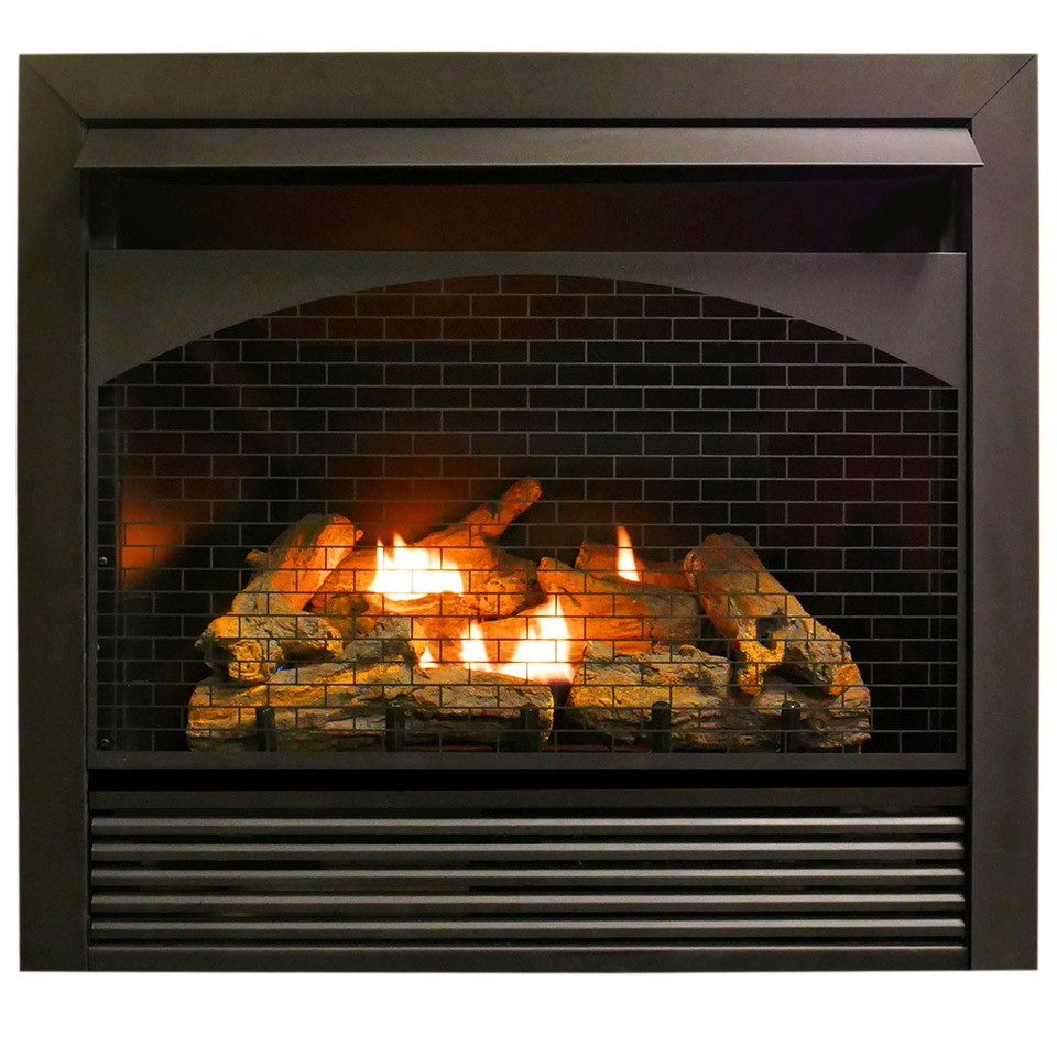 Ventless Lp Gas Fireplace Awesome Gas Fireplace Insert Dual Fuel Technology with Remote Control 32 000 Btu Fbnsd32rt Pro Heating