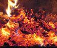 Water Fireplace Best Of Zeke Skin Daaaaah Dnd Game