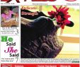 Fake Fireplaces Sale Beautiful Trader July 20 by south East Trader Express issuu