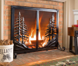 Fireplace Screen Ideas Fresh 501 Best Fireplace & Hearth Favorites Images In 2020