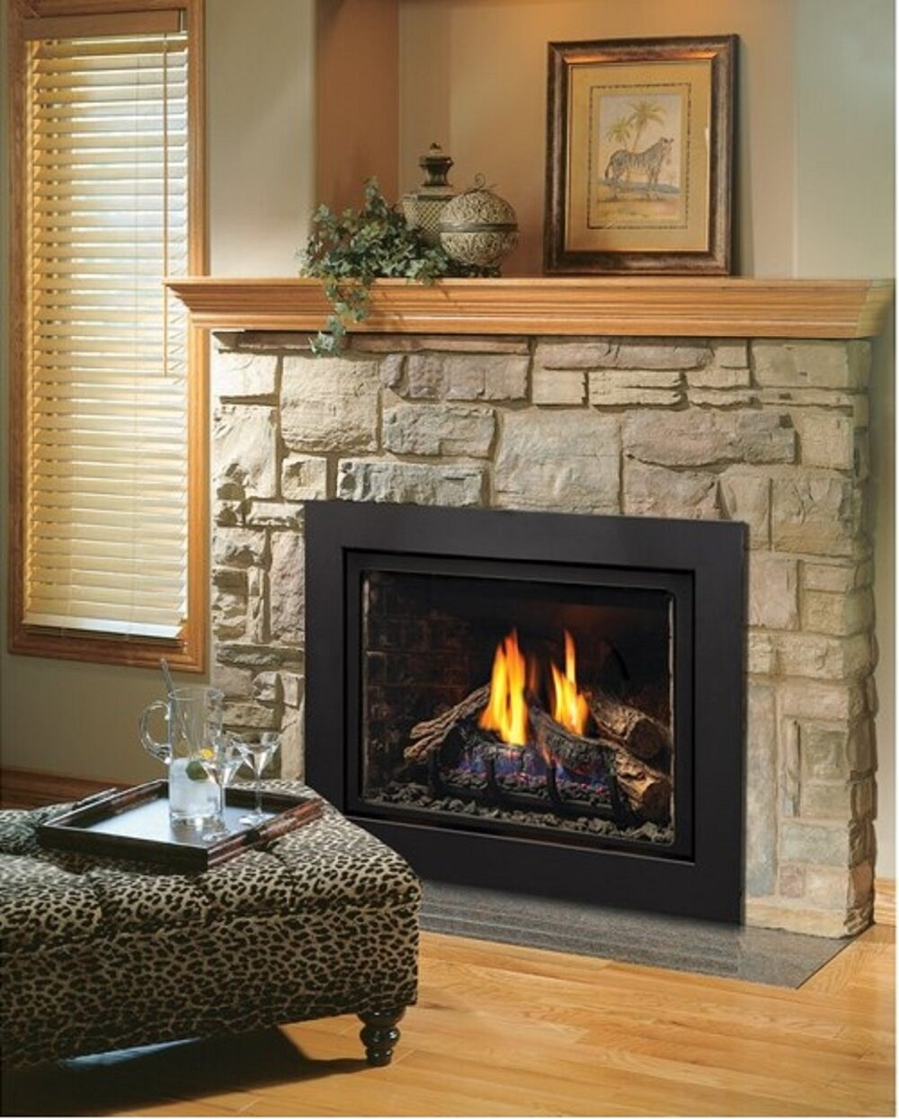direct vent natural gaspropane fireplace insert