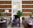 Modern Fireplace Screens Unique Fireplace Ideas and Fireplace Designs