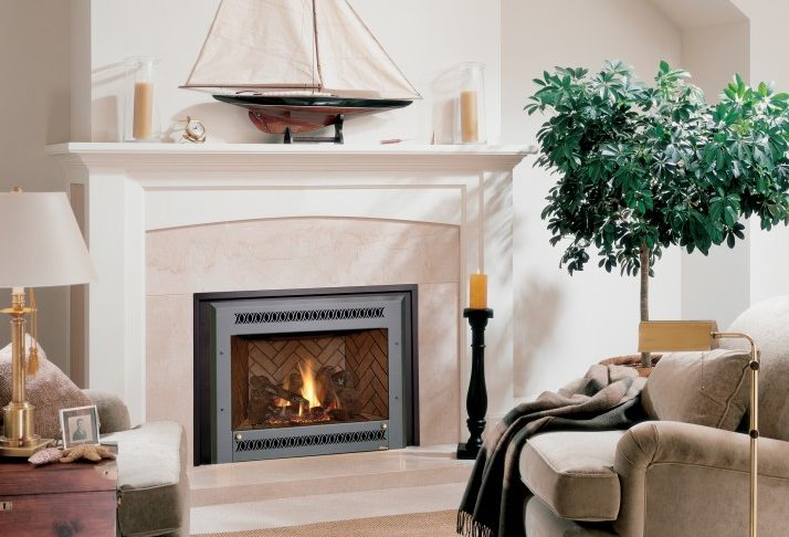 Georgetown Fireplace and Patios Fresh Fireplace Inserts