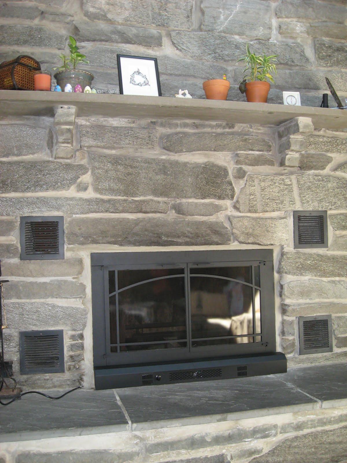 Fireplace Grate with Blower Inspirational Antijenic Drift Project Fireplace Doors